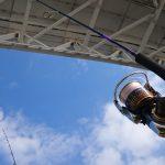 16セルテート2508PEのインプレッション
