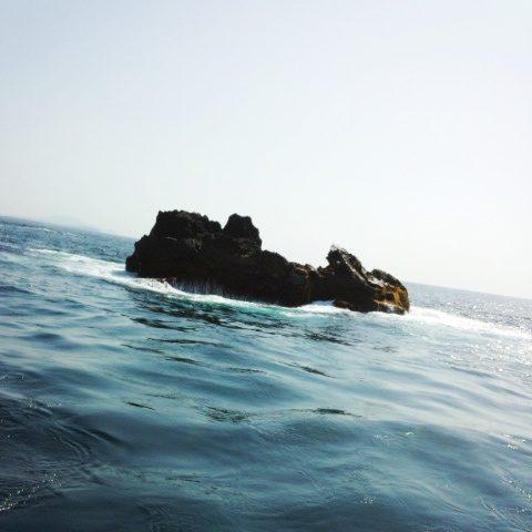 鵜渡根島の磯~カツオ根
